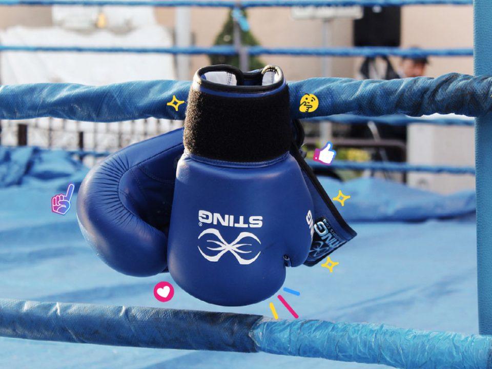 Boxing gloves representing Google vs Bing